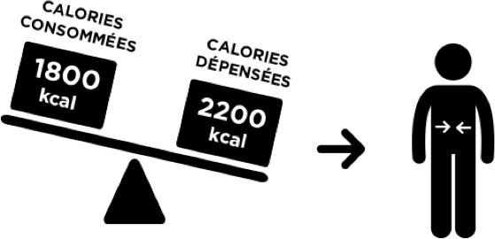 Calories consommées et dépensées