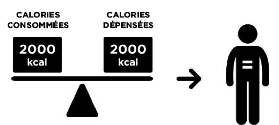 Calories consommées